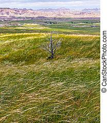 Vistas of Badlands National Park, USA