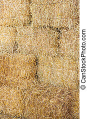 Rice straw bales - Stacks of rice straw bales background