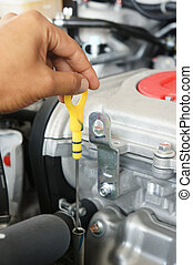 checking oil - A person checking the motor oil in their car...