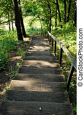 old wooden stairs in forest - old wooden stairs leading to...