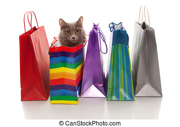 We have bought a cat! - Assorted colored shopping bags and a...