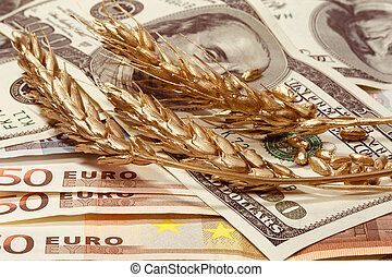 Golden ears of wheat in dollars and euro banknotes