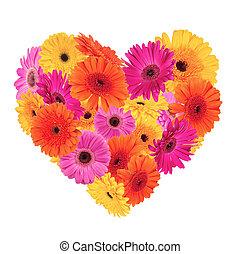 Heart symbol made of gerber blossoms