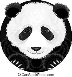 Panda. Vector illustration