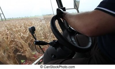 Farmer driving a thresher while har - View inside the cab...