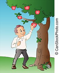 Man Picking Apples from a Tree, illustration - Man Picking...