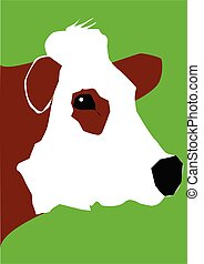 portrait of a cow - portrait of a red and white cow