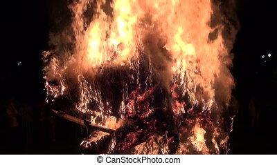 fire in summer night park