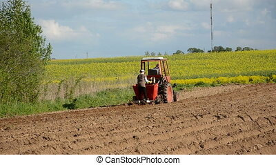 small tractor on farm field planting potato