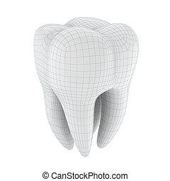 3D, dente, branca, fundo