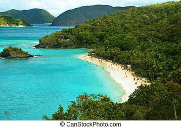 St. John, USVI Island Beach - The beauty of the turquoise...
