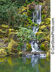 Long Garden Waterfall over moss covered boulders and green...