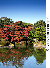 Autumn pond and garden in fall - A 300 year old traditional...