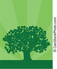 Environment Tree - Green silhouette of a maple tree against...