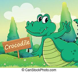 A crocodile beside a wooden signboard