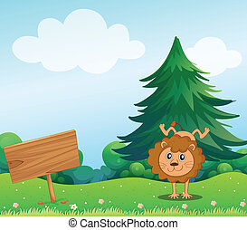A little lion in the hill with a wooden signboard