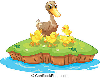 Five ducks in an island