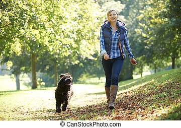 woman walking dog - woman walking her black dog in the park...