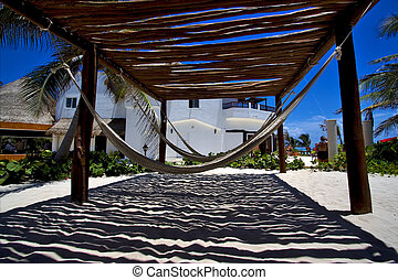 mexico hammock tree palm peace marble and relax near the...