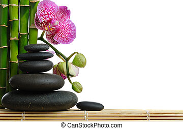 Orchid - Pink orhid and stones on the white background