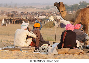 Pushkar Camel Fair - Group of camel traders relaxing at the...