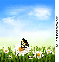 Nature background with green grass and flowers witn butterfly. Vector