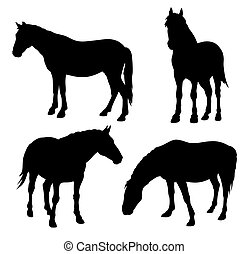 Horses - Abstract vector illustration of horse silhouettes