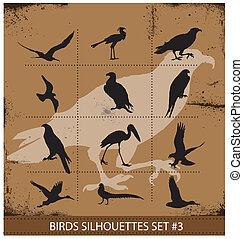 Birds  silhouettes vector symbols black color