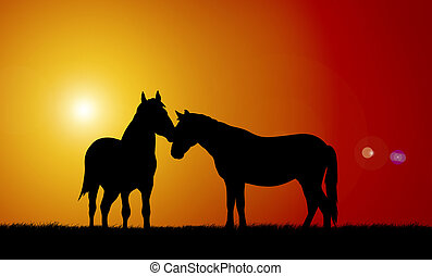 Horses - Illustration of horses on sunset background