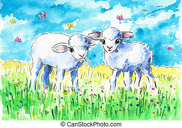 Lambs - Two cute lambs on summer fieldPicture created with...