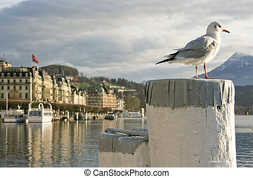 Lucern, Switzerland - The charming city of Lucern in...