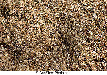 Sawdust - Picture of a heap of sawdust