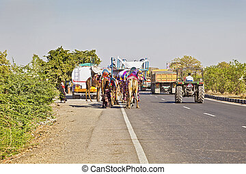 Camel Train Tractor and Trucks India