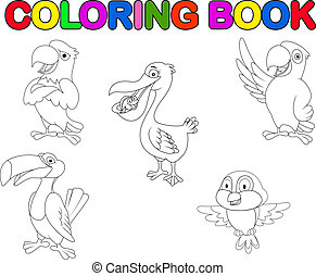 Bird collection coloring book - Vector illustration of bird...