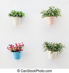 Colorful flowerpots on  the white wall