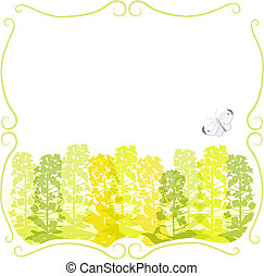 Framed Canola silhouettes - Stem frame with canola flower...
