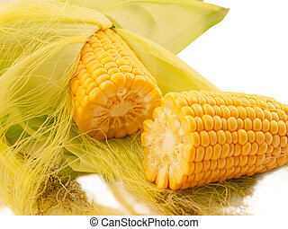 An ear of corn macro
