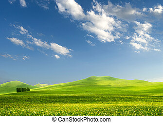 solitary tree on grassy hill and blue sky with clouds in the...