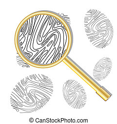 Magnifying glass and fingerprint - Fingerprint viewed under...
