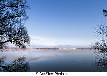 Danube - Mirror of trees wintertime riverbank