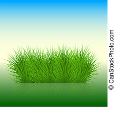 Vector grass background. eps10