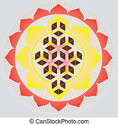 Flower of life seed - Sacred geometry-Flower of life-vector...