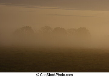 Morning mist 2 - The sum tries to break trough the morning...