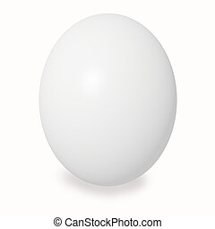 white large chicken egg on a white background