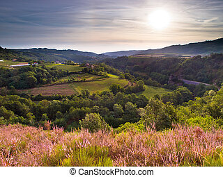 French Landscape - Rural Landscape in the early Morning in...