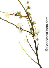 Artificial Plum Blossom