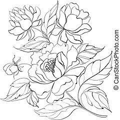Ink Painting of Peony. - Ink Painting of Peony isolated on...