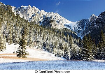 Mountains landscape in Tatra Mountains Dolina Koscieliska