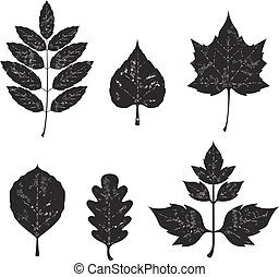Grunge leaves silhouete set 01