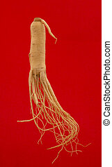 Ginseng root on a red background.